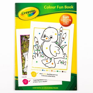 Crayola Colour Fun Activity Book
